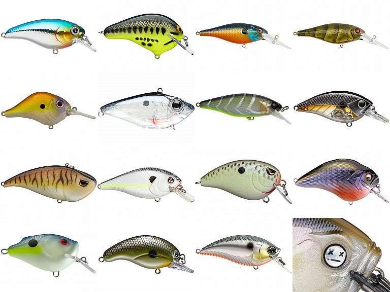 fisheyes.jpg.5de04bf7e5af139311e20afb0150a747.jpg